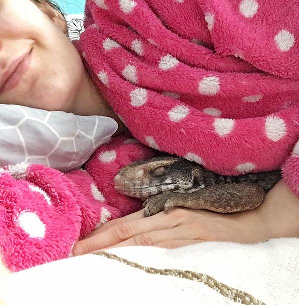 人間にとても懐く可愛いトカゲのペット! (15)