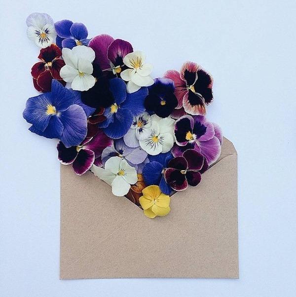 クラフト封筒に入れられた花束 (7)