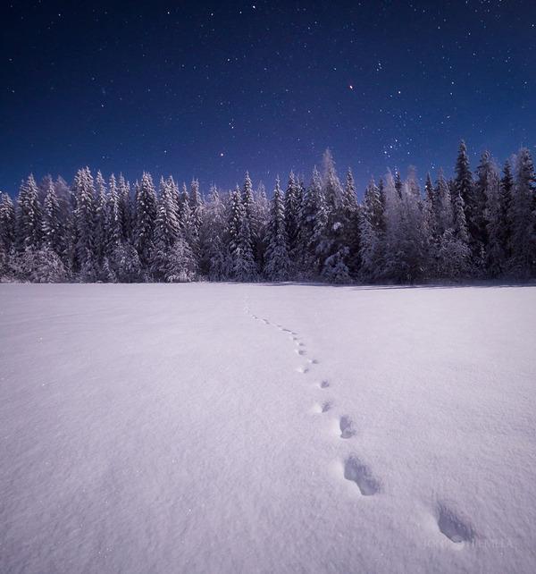 綺麗すぎ!フィンランドの夜空、満天の星空の写真 (9)