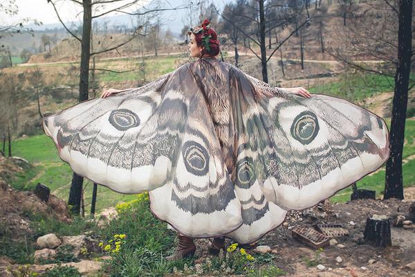 蝶の羽根模様のスカーフデザイン (2)