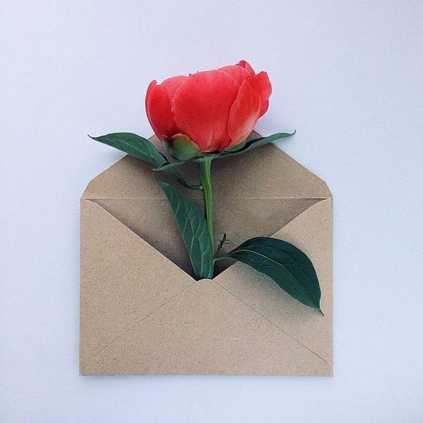 クラフト封筒に入れられた花束 (10)