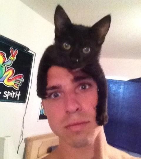猫帽子 8