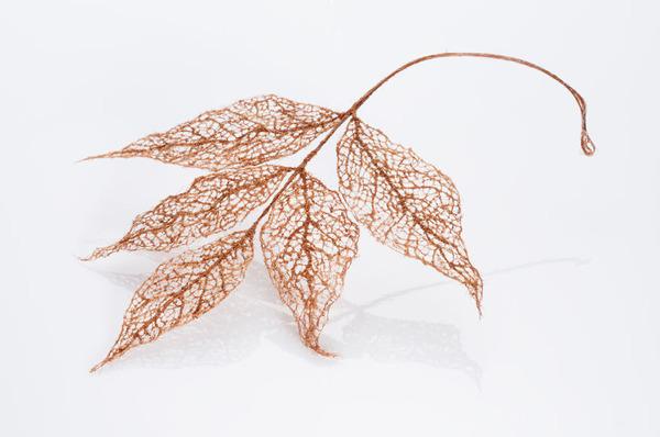 超繊細!人間の髪の毛で作るリアルな木の葉 (7)