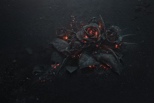 燻り燃える美しい薔薇 (2)