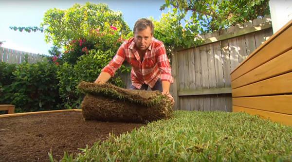 限りなくナチュラル!裏庭に設置する草のベッド (7)