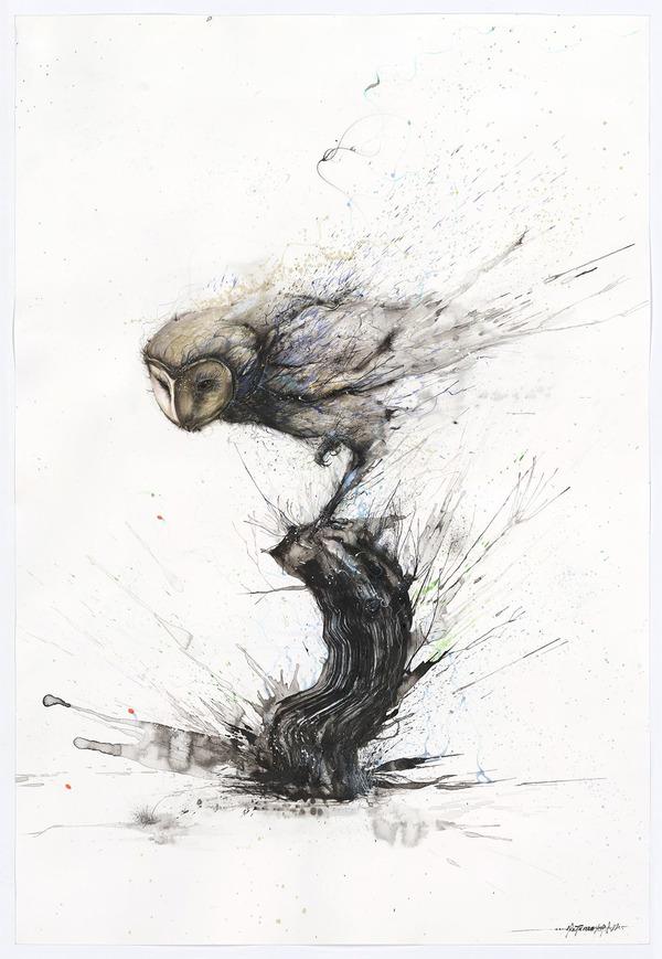 梟の水墨画 -HUA TUNAN- 画图男