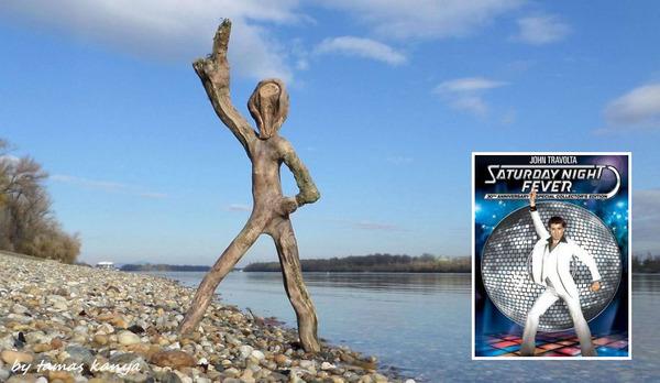 歪な形がゾンビっぽい!ドナウ川の流木で作られた彫刻作品 (5)