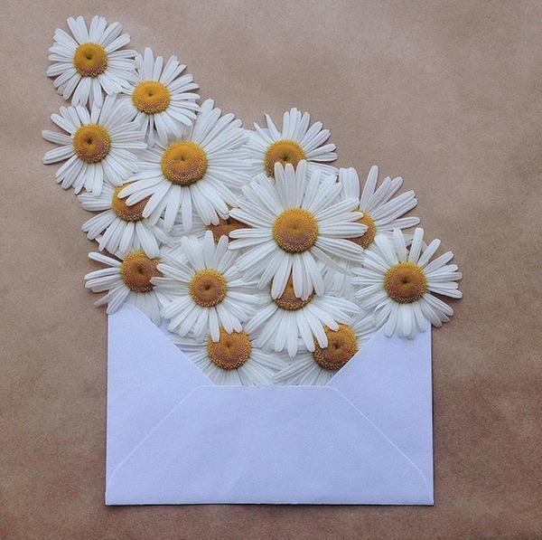 クラフト封筒に入れられた花束 (3)