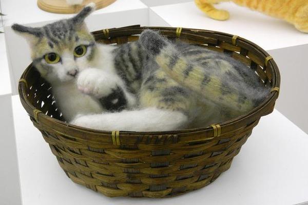 羊毛フェルトのリアル猫人形6