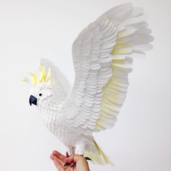 カラフル!リアル!鳥や蝶をモチーフにした紙の彫刻作品 (6)