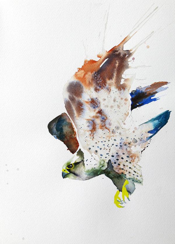 フクロウやワシなどの鳥類を描いたカラフルな水彩画 (11)