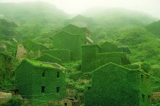自然の植物に飲み込まれつつある中国の漁村が神秘的な光景