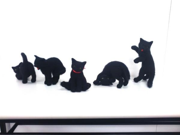 羊毛フェルトのリアル猫人形5