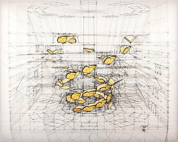 黄金比で描かれた手描きイラスト集!蝶や貝殻など (14)