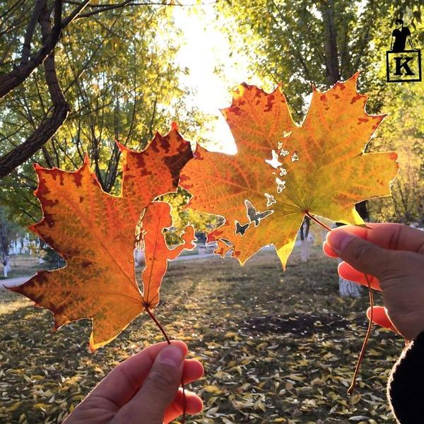 シンプルな美しさ。葉っぱの切り絵アート (2)