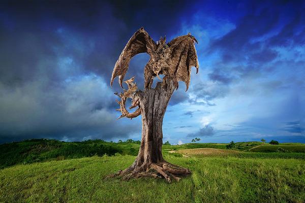 流木で作られたドラゴンの彫像,彫刻 6