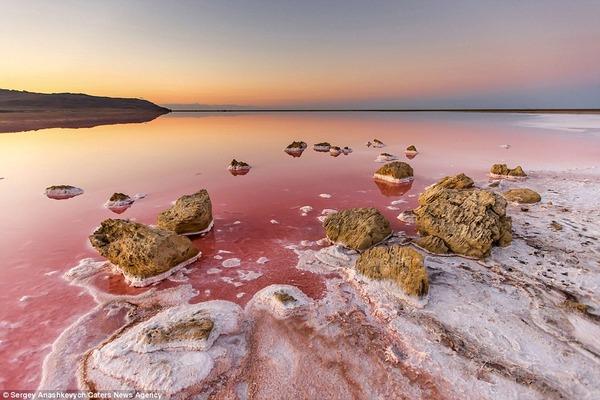 紅く染まる塩湖 Koyashskoye 10