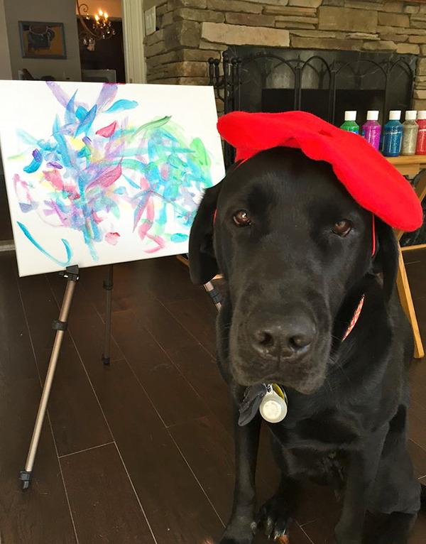 犬の画伯現る!補助犬から画家に転向したわんこの絵 (8)