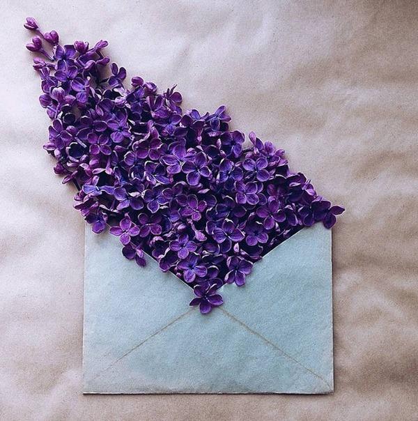 クラフト封筒に入れられた花束 (12)