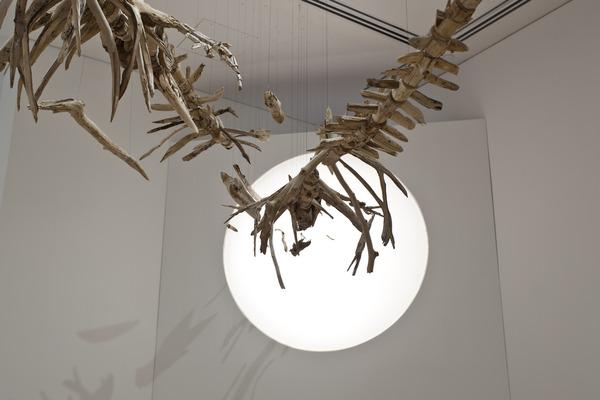 流木彫刻!絶滅した淡水イルカ、ヨウスコウカワイルカを描く (3)