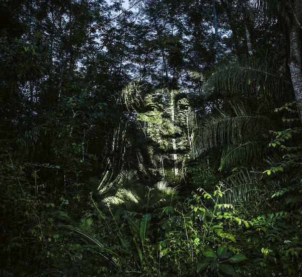 アマゾンの森に投影されたブラジル先住民スルイ族 (3)