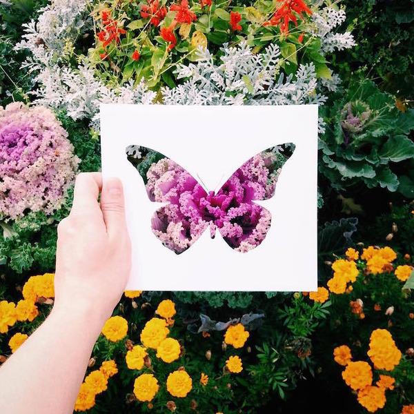 紙の動物のシルエットを自然が色鮮やかにカラーリング! (1)