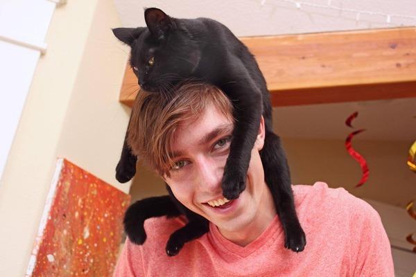 猫帽子 15
