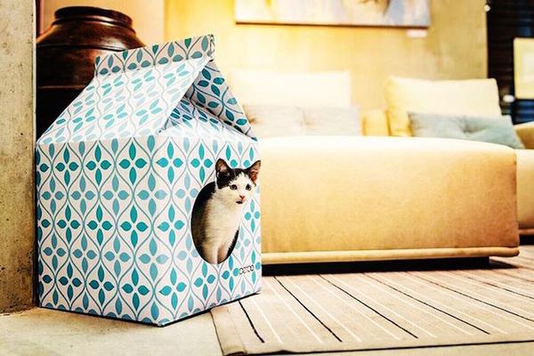 猫がすっぽり入れちゃう牛乳パック型のネコホイホイ! (4)