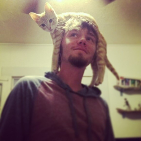 猫帽子 17