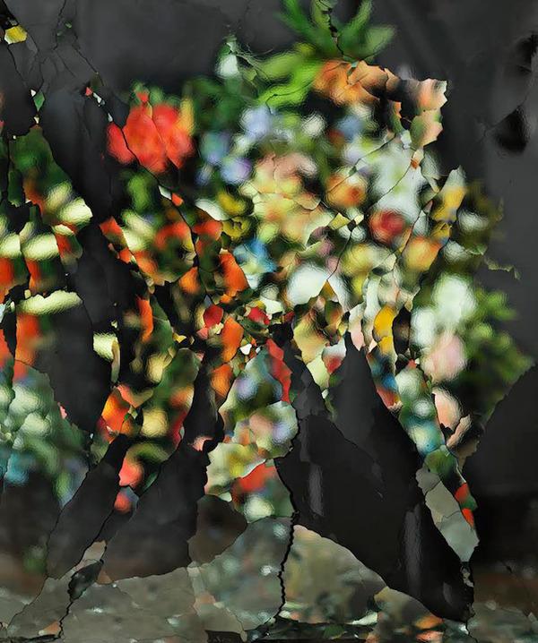 壊れた鏡に反射させた花 5