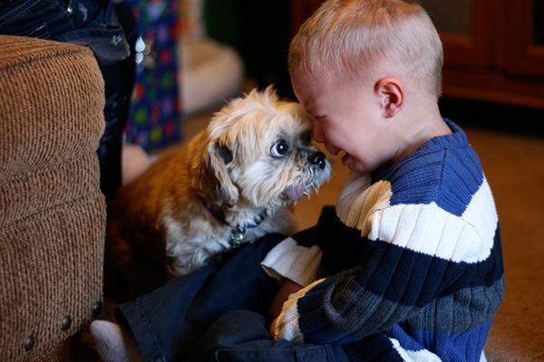 ペットは大切な家族!犬や猫と人間の子供の画像 (67)