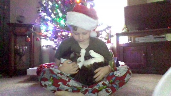 ペットは大切な家族!犬や猫と人間の子供の画像 (73)