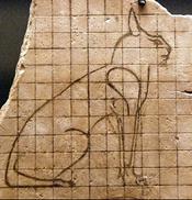 カラカルの画像!麻呂眉と耳の房毛が特徴的なネコ科動物 (2)