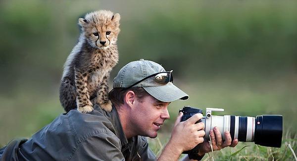 カメラに興味津々な動物の画像 (22)