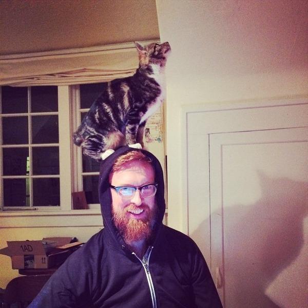 猫帽子 10