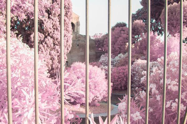 赤外線カメラで撮影されたイタリア・ローマの景色が幻想的 (12)
