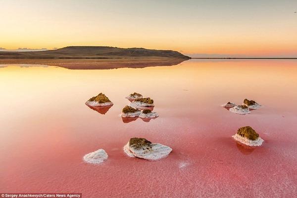 紅く染まる塩湖 Koyashskoye 2