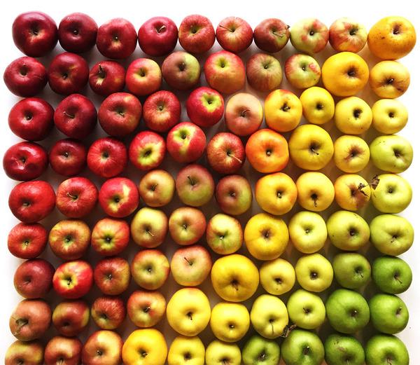 果物のカラフルなグラデーション アート写真 Brittany Wright 4
