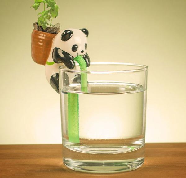ゴクゴク!水を吸い上げる動物型ミニプランターがかわいい (2)