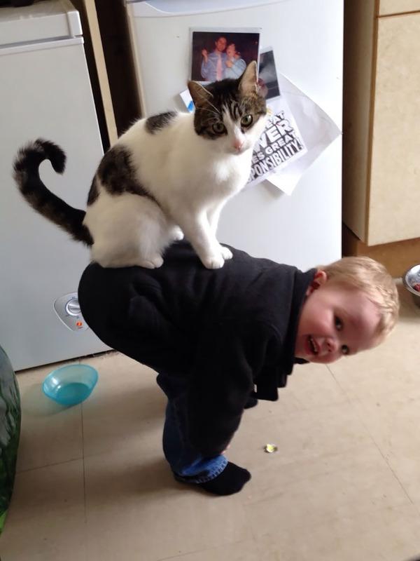 ペットは大切な家族!犬や猫と人間の子供の画像 (22)