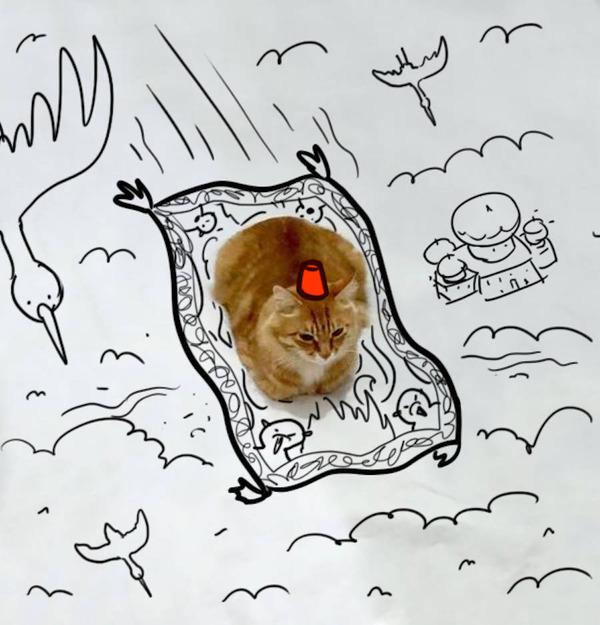 才能の無駄遣い?香箱座りの猫の画像にみんなで落書き! (16)