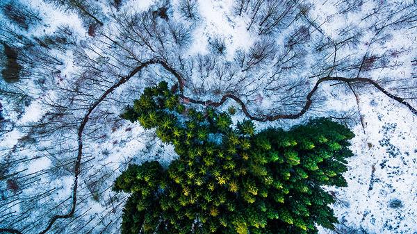 『Dronestagram 2016』!ドローンでスゴイ空撮写真を競うよー (8)