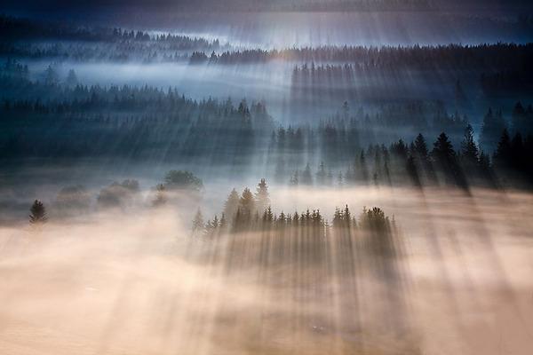 陽が差し込んだポーランドの景色12