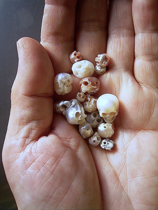 歯もあるよ!日本人デザイナーによる真珠の頭蓋骨 (1)