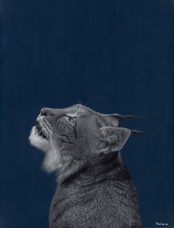 超繊細!ヒョウやライオンなどの野生動物をリアルに描いた絵画 (8)
