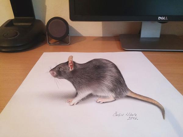 歪像によって浮き出て見える3D絵画アートが面白い! (12)