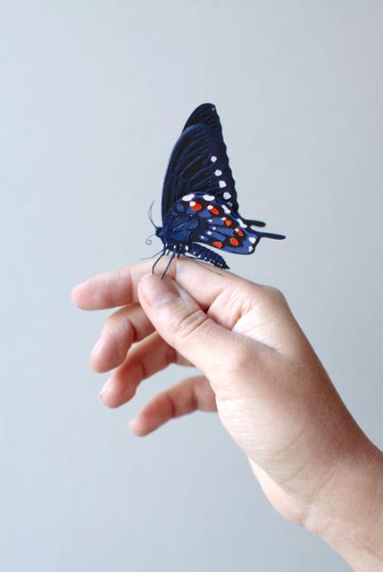 カラフル!リアル!鳥や蝶をモチーフにした紙の彫刻作品 (1)