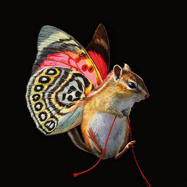 蝶々の羽が生えたネズミやリス小動物を描いた絵 (4)