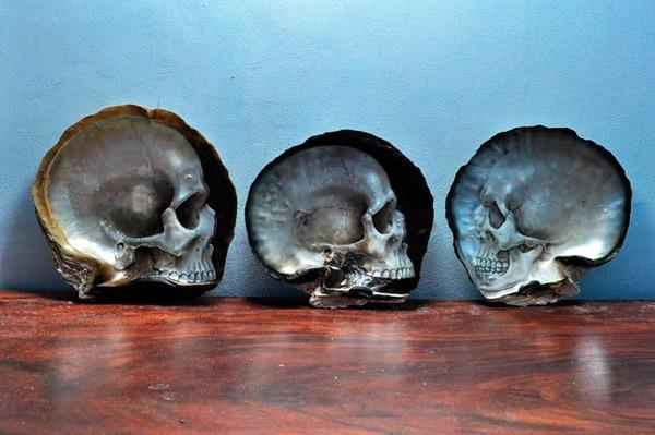 美しい質感。貝殻に髑髏(ドクロ)を彫った彫刻作品 (9)