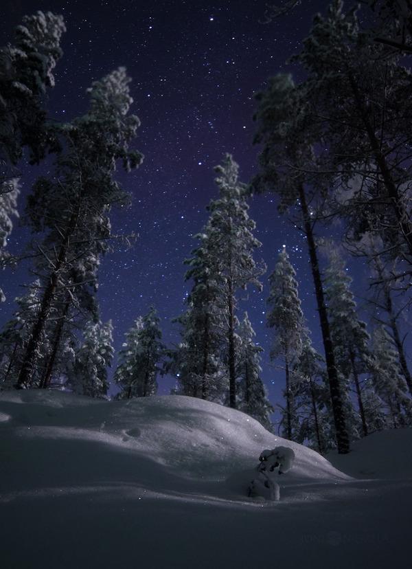綺麗すぎ!フィンランドの夜空、満天の星空の写真 (8)
